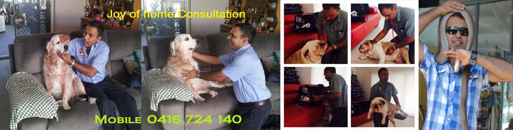 We offer Extended Home Consultation in Homely Environment